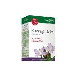 Napi1 KISVIRÁGÚ FÜZIKE Extraktum kapszula 150 mg 30 db - A prosztata egészségéért